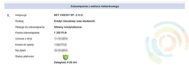 netcredit wpisuje do BIK